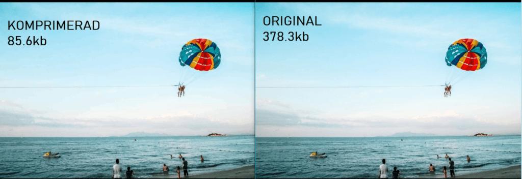 Före och efter jämförelse bildkomprimering med GIMP